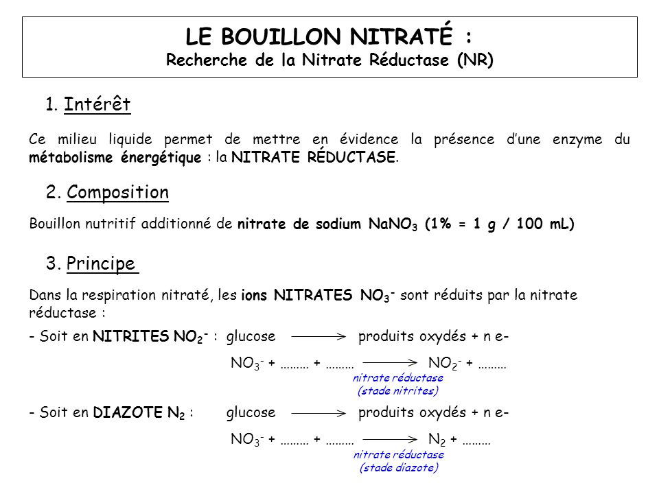 LE BOUILLON NITRATÉ : Recherche de la Nitrate Réductase (NR) 1. Intérêt Ce milieu liquide permet de mettre en évidence la présence d'une enzyme du mét