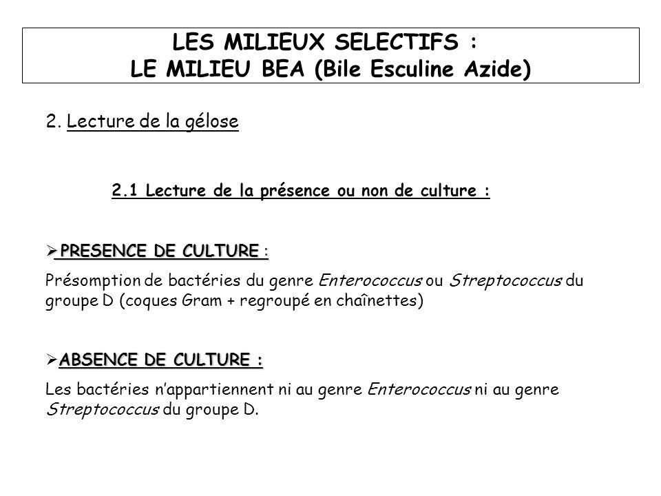 2. Lecture de la gélose 2.1 Lecture de la présence ou non de culture :  PRESENCE DE CULTURE : Présomption de bactéries du genre Enterococcus ou Strep