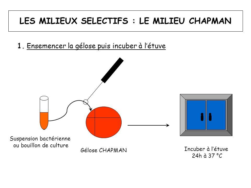 LES MILIEUX SELECTIFS : LE MILIEU CHAPMAN 2.