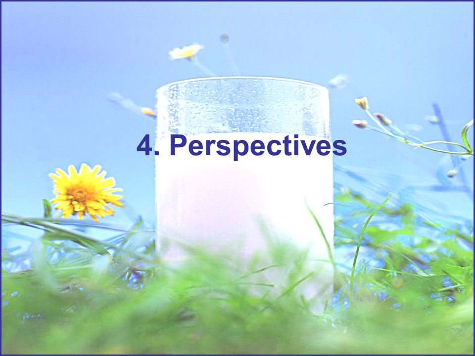 4. Perspectives
