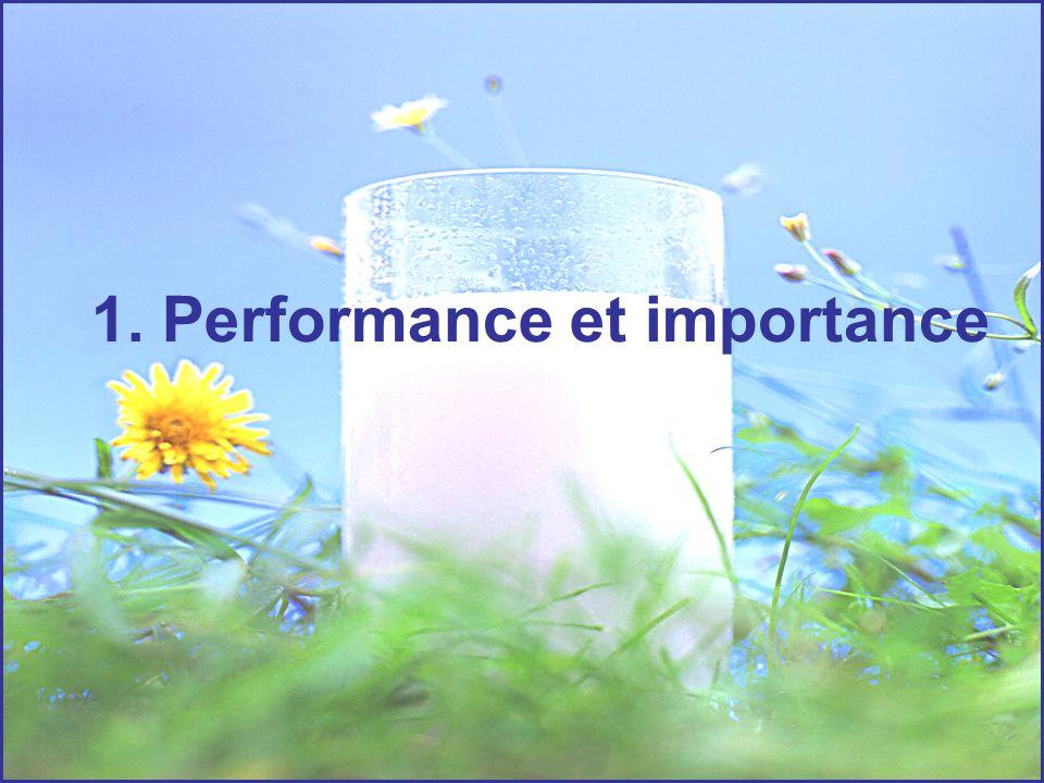 1. Performance et importance