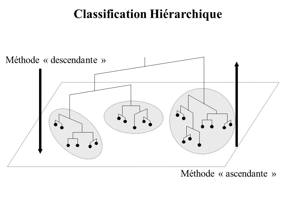 Classification Hiérarchique Méthode « descendante » Méthode « ascendante »