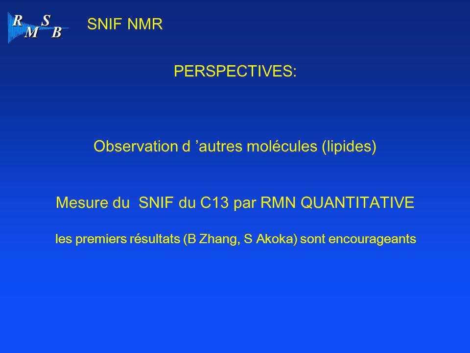 R M S B PERSPECTIVES: Observation d 'autres molécules (lipides) Mesure du SNIF du C13 par RMN QUANTITATIVE les premiers résultats (B Zhang, S Akoka) s
