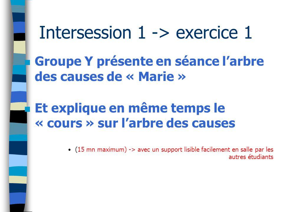 Intersession 1 -> exercice 1 n Groupe Y présente en séance l'arbre des causes de « Marie » n Et explique en même temps le « cours » sur l'arbre des ca