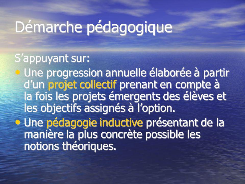 Démarche pédagogique S'appuyant sur: Une progression annuelle élaborée à partir d'un projet collectif prenant en compte à la fois les projets émergent