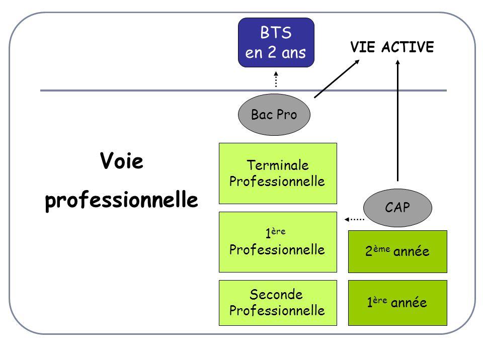 Seconde Professionnelle 1 ère Professionnelle Bac Pro VIE ACTIVE 1 ère année 2 ème année CAP Terminale Professionnelle Voie professionnelle BTS en 2 ans