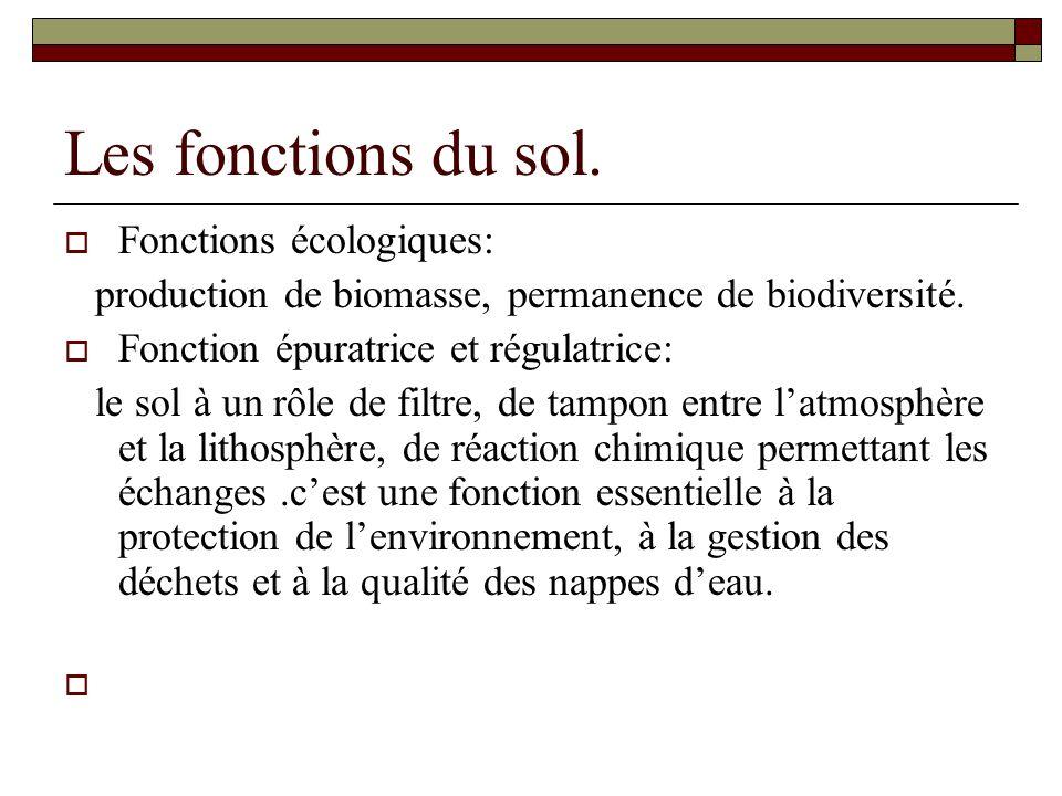 Les fonctions du sol. Fonctions écologiques: production de biomasse, permanence de biodiversité.