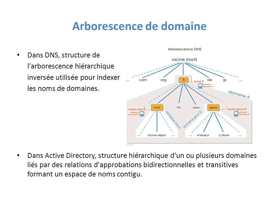 Arborescence de domaine Dans DNS, structure de l arborescence hiérarchique inversée utilisée pour indexer les noms de domaines.