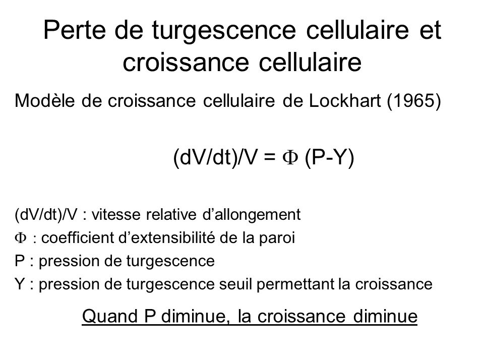Perte de turgescence cellulaire et croissance cellulaire Modèle de croissance cellulaire de Lockhart (1965) (dV/dt)/V =  (P-Y) (dV/dt)/V : vitesse re