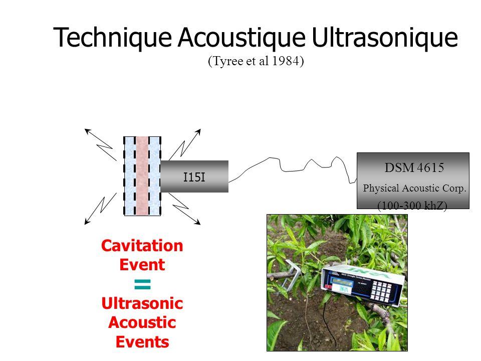 Technique Acoustique Ultrasonique (Tyree et al 1984) Cavitation Event I15I DSM 4615 Physical Acoustic Corp. (100-300 khZ) Ultrasonic Acoustic Events =