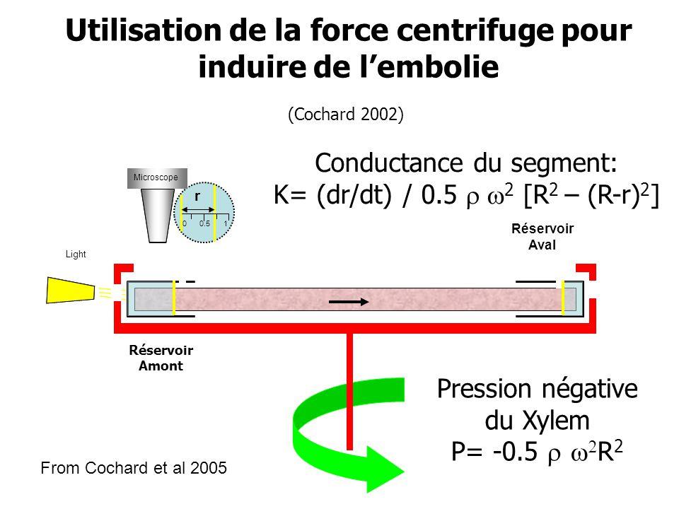 Microscope 0 r 0.5 1 Light Réservoir Amont Réservoir Aval Microscope Pression négative du Xylem P= -0.5    R 2 Conductance du segment: K= (dr/dt) /