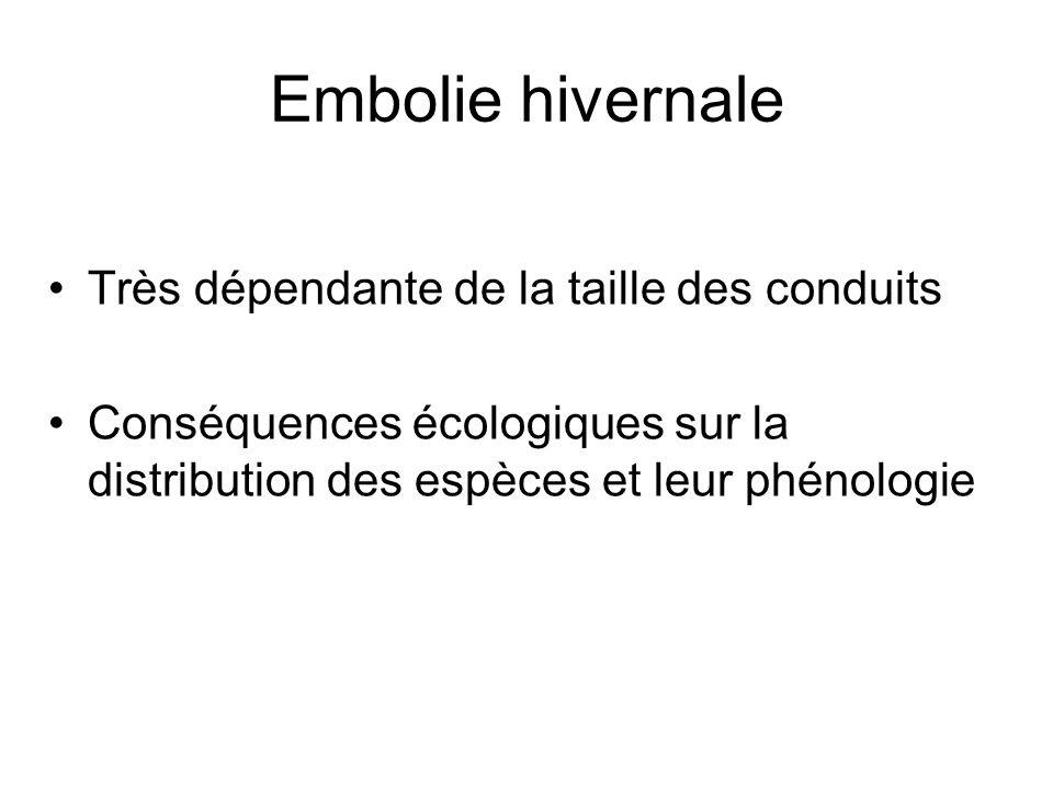 Embolie hivernale Très dépendante de la taille des conduits Conséquences écologiques sur la distribution des espèces et leur phénologie