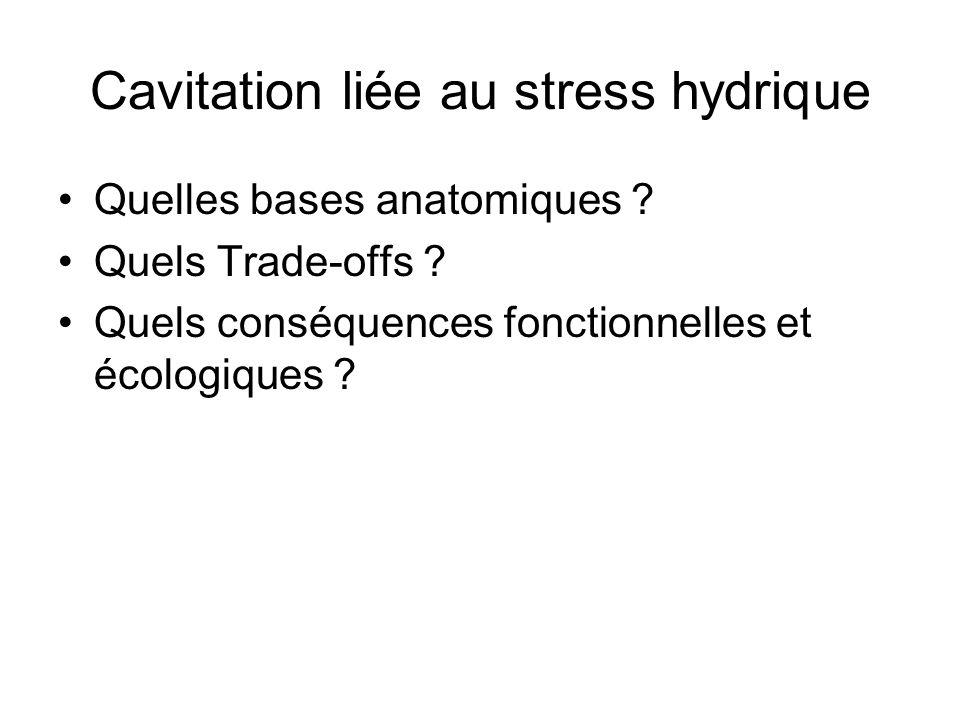 Cavitation liée au stress hydrique Quelles bases anatomiques ? Quels Trade-offs ? Quels conséquences fonctionnelles et écologiques ?