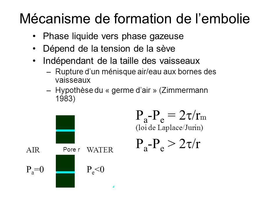 Mécanisme de formation de l'embolie Phase liquide vers phase gazeuse Dépend de la tension de la sève Indépendant de la taille des vaisseaux –Rupture d