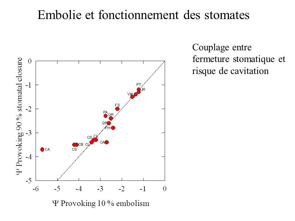Embolie et fonctionnement des stomates  Provoking 10 % embolism  Provoking 90 % stomatal closure Couplage entre fermeture stomatique et risque de ca