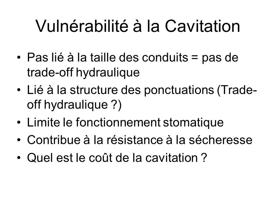 Vulnérabilité à la Cavitation Pas lié à la taille des conduits = pas de trade-off hydraulique Lié à la structure des ponctuations (Trade- off hydrauli