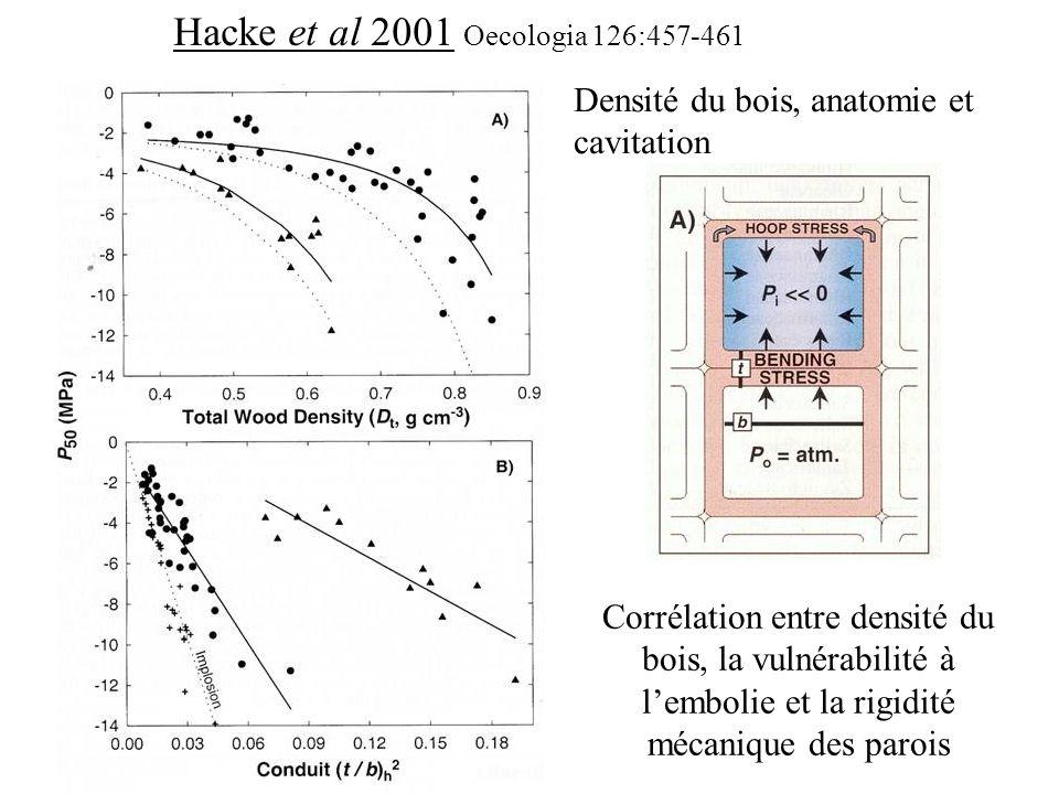 Hacke et al 2001 Oecologia 126:457-461 Densité du bois, anatomie et cavitation Corrélation entre densité du bois, la vulnérabilité à l'embolie et la r