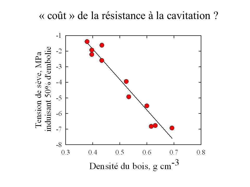 « coût » de la résistance à la cavitation ?