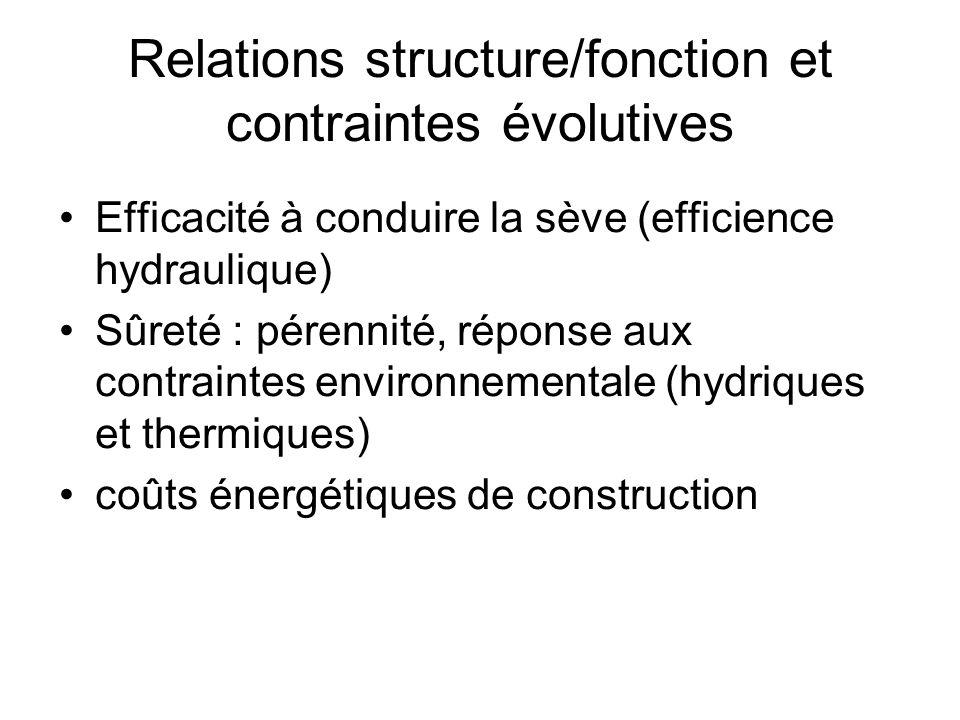 Relations structure/fonction et contraintes évolutives Efficacité à conduire la sève (efficience hydraulique) Sûreté : pérennité, réponse aux contrain