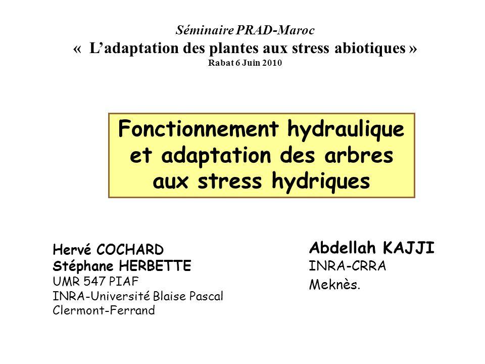 XYL'EM Techniques de mesure de la cavitation Emissions Acoustiques Tyree et al 1985 Perte de conductance hydraulique Sperry et al 1988 Injection d'air Cochard et al 1992 Centrifugation Cochard et al 2005