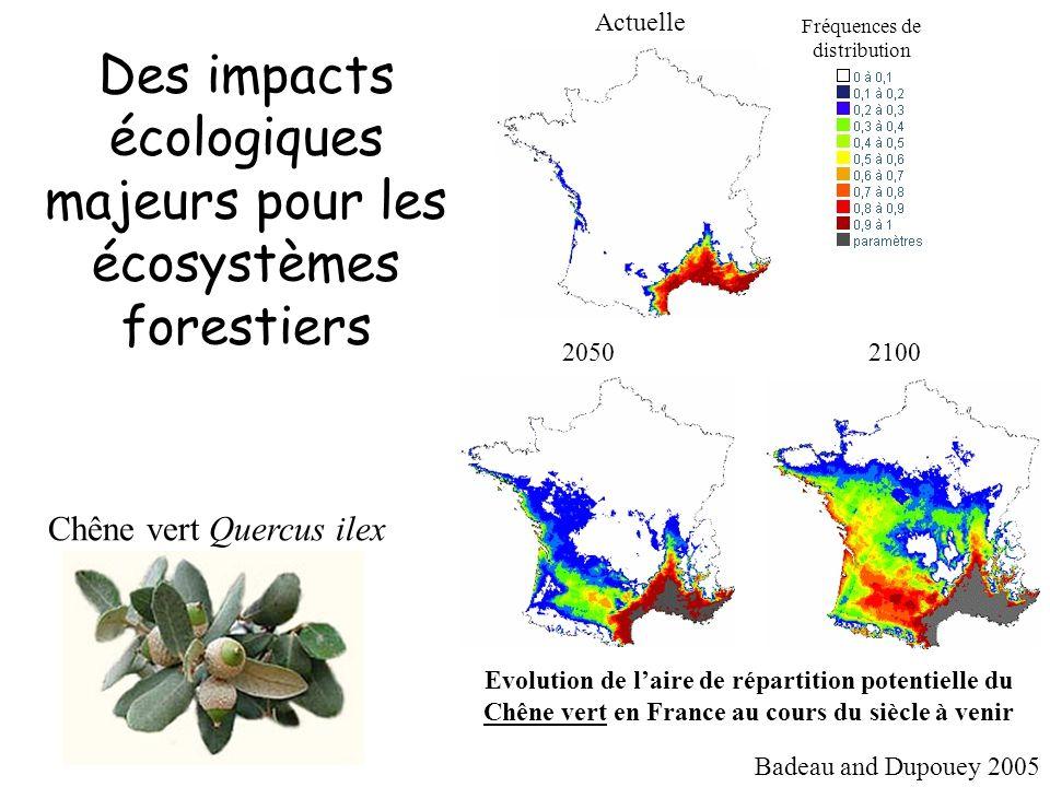 La vulnérabilité à la cavitation est liée aux préférences écologiques des espèces forestières Les essences des milieux secs sont plus résistantes à la cavitation P50
