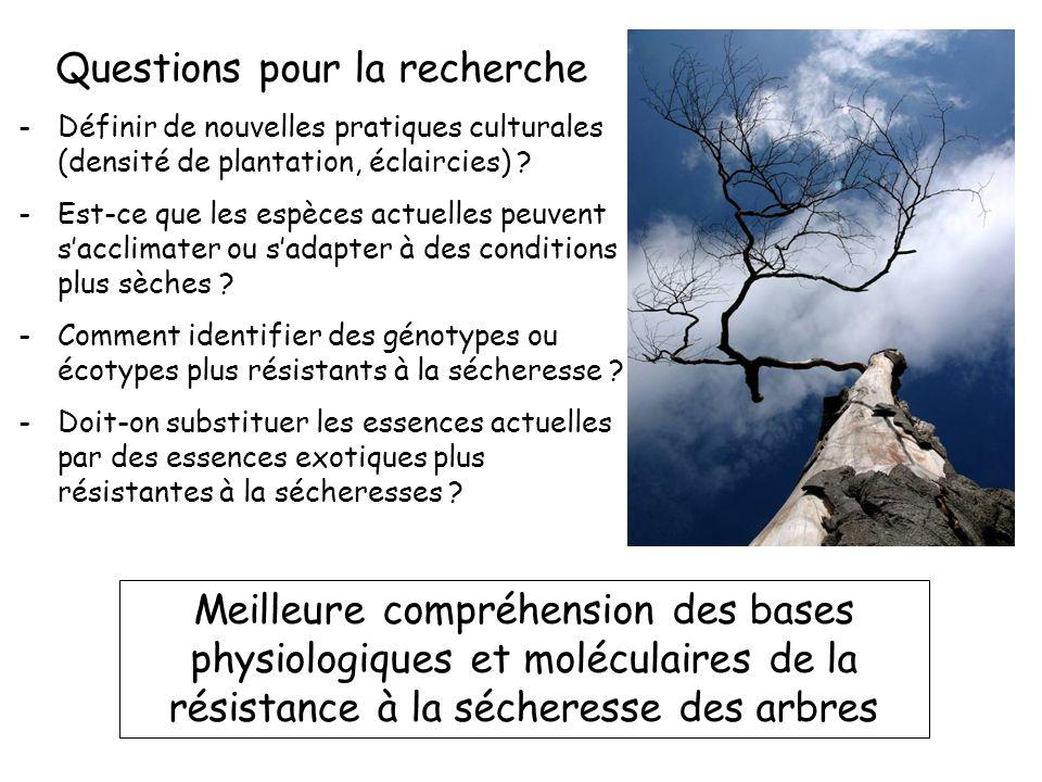 Rameau et al Flore Forestière Française Cavitation : caractère adaptatif pour la survie en conditions xériques .