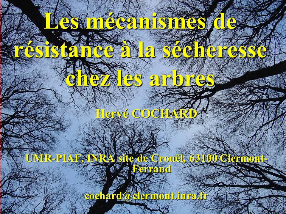 Les mécanismes de résistance à la sécheresse chez les arbres Hervé COCHARD UMR-PIAF, INRA site de Crouël, 63100 Clermont- Ferrand cochard@clermont.inr