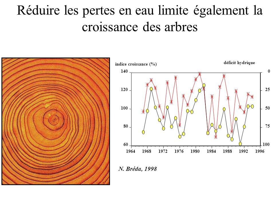 Réduire les pertes en eau limite également la croissance des arbres 0 25 50 75 100 déficit hydrique 60 80 100 120 140 indice croissance (%) 1964196819