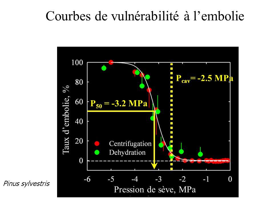 Courbes de vulnérabilité à l'embolie P cav = -2.5 MPa Pinus sylvestris P 50 = -3.2 MPa Pression de sève, MPa Taux d'embolie, %
