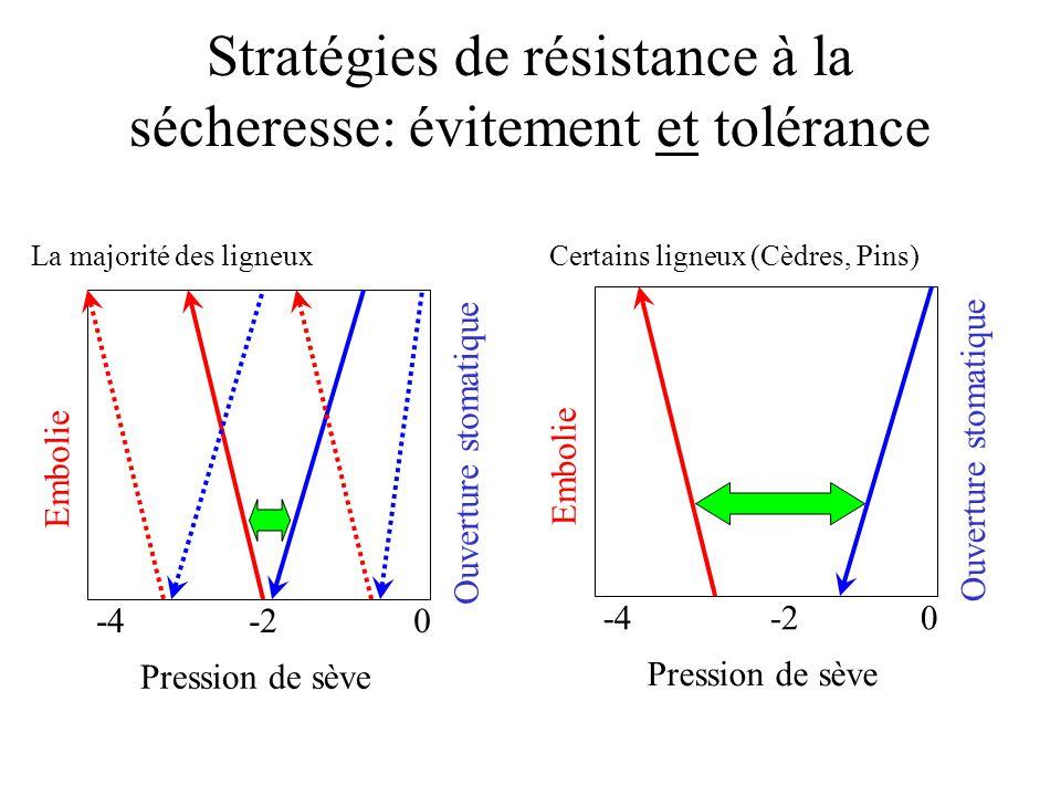 Stratégies de résistance à la sécheresse: évitement et tolérance Pression de sève 0-2-4 Ouverture stomatique Embolie La majorité des ligneux Pression