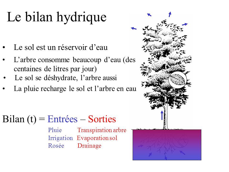 Le bilan hydrique Le sol est un réservoir d'eau Bilan (t) = Entrées – Sorties Pluie Transpiration arbre Irrigation Evaporation sol Rosée Drainage L'ar