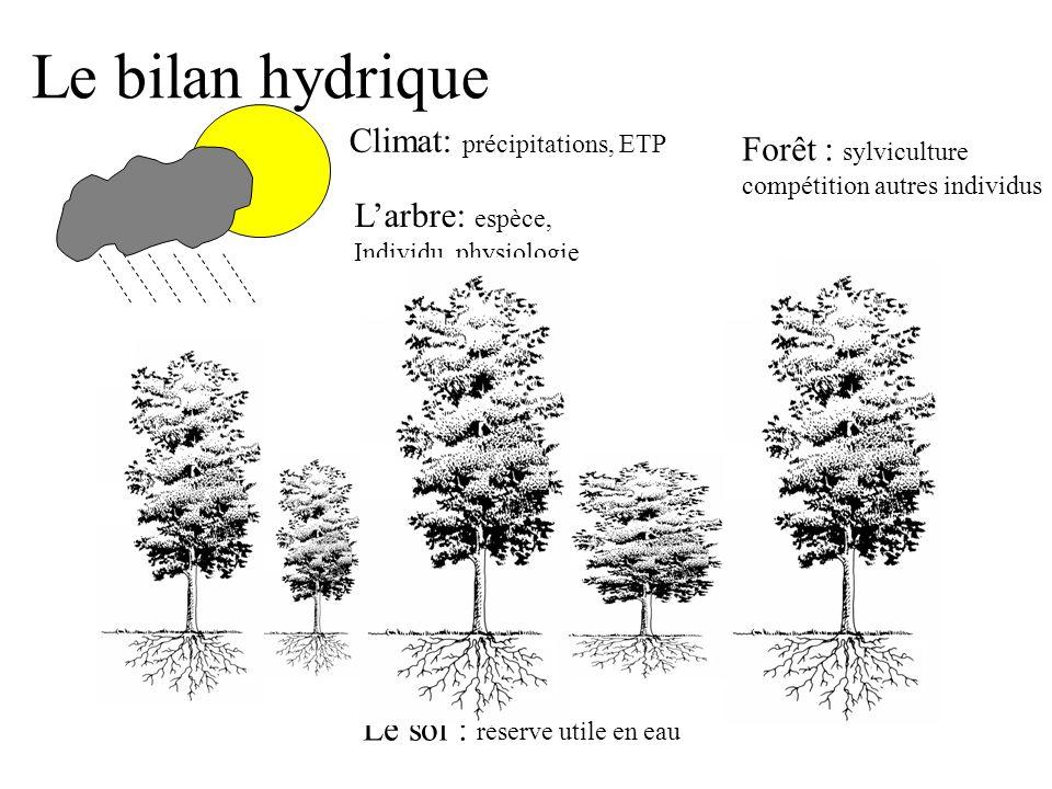 Le Bilan hydrique conditionne l'état hydrique de l'arbre Plus le sol est sec, plus l'arbre est sec Le degré de déshydratation se mesure par la pression (négative) de l'eau (bars, MPa) sol humide P = 0 bars sol sec P = -10 bars sol très sec P = -20 bars Pression 0 -20 Temps Sol Arbre Chambre à pression