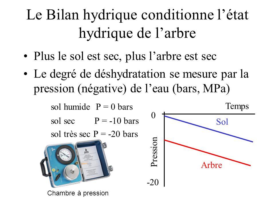 Le Bilan hydrique conditionne l'état hydrique de l'arbre Plus le sol est sec, plus l'arbre est sec Le degré de déshydratation se mesure par la pressio