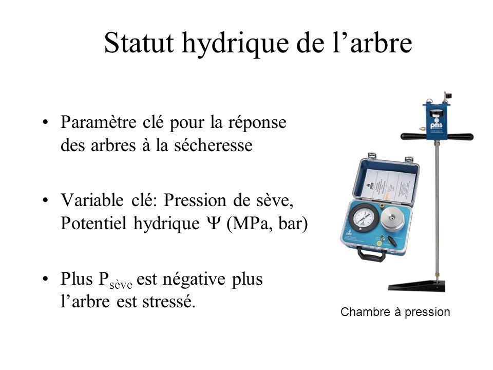 Statut hydrique de l'arbre Paramètre clé pour la réponse des arbres à la sécheresse Variable clé: Pression de sève, Potentiel hydrique  (MPa, bar) P