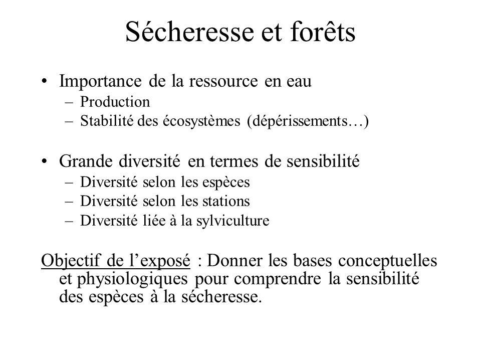 Sécheresse et forêts Importance de la ressource en eau –Production –Stabilité des écosystèmes (dépérissements…) Grande diversité en termes de sensibil