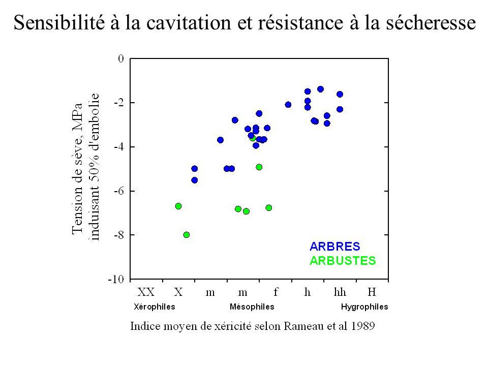 Sensibilité à la cavitation et résistance à la sécheresse