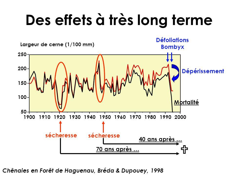 Des effets à très long terme 50 100 150 200 250 Largeur de cerne (1/100 mm) 19001910192019301940195019601970198019902000 Chênaies en Forêt de Haguenau