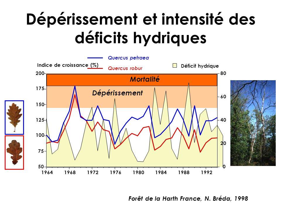 Dépérissement Mortalité Dépérissement et intensité des déficits hydriques 0 20 40 60 80 Déficit hydrique 50 75 100 125 150 175 200 Indice de croissanc