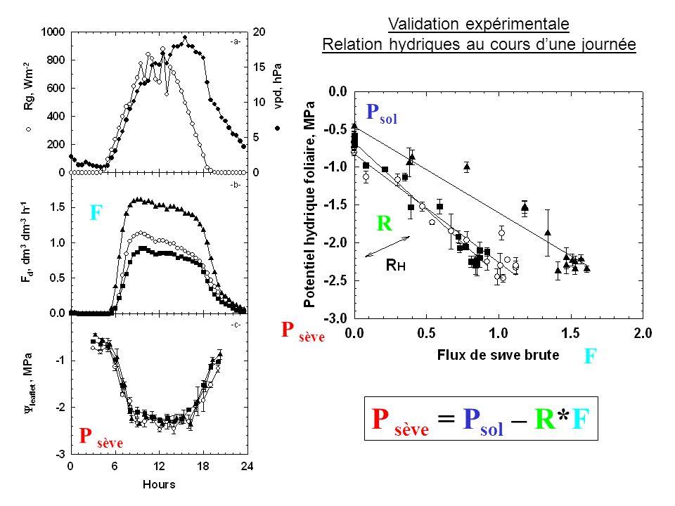 Validation expérimentale Relation hydriques au cours d'une journée P sève = P sol – R*F P sève P sol F R F P sève