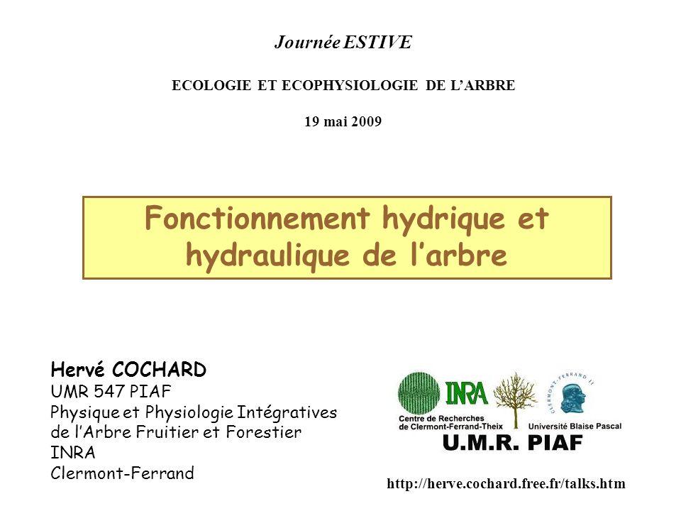 Journée ESTIVE ECOLOGIE ET ECOPHYSIOLOGIE DE L'ARBRE 19 mai 2009 Fonctionnement hydrique et hydraulique de l'arbre Hervé COCHARD UMR 547 PIAF Physique