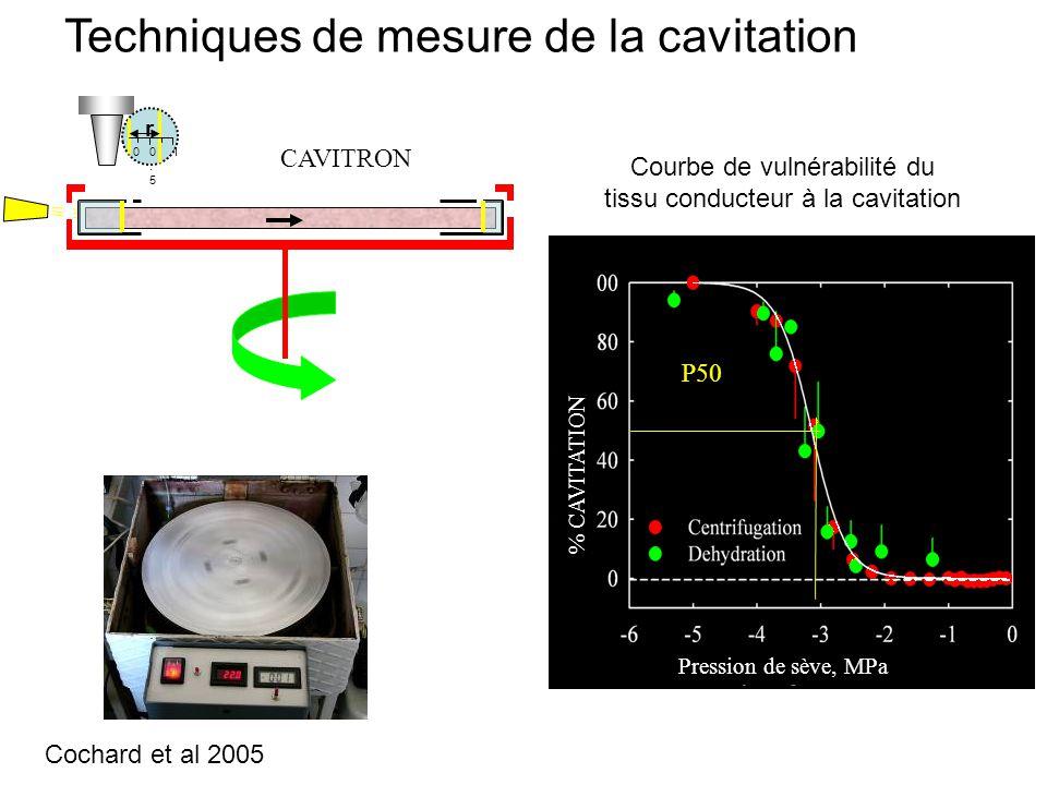 0 r 0.50.5 1 CAVITRON % CAVITATION Pression de sève, MPa P50 Techniques de mesure de la cavitation Courbe de vulnérabilité du tissu conducteur à la cavitation Cochard et al 2005