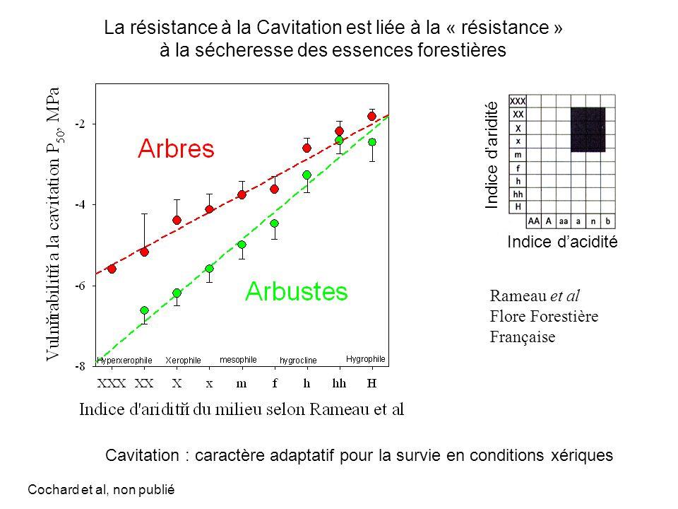 Rameau et al Flore Forestière Française La résistance à la Cavitation est liée à la « résistance » à la sécheresse des essences forestières Cavitation : caractère adaptatif pour la survie en conditions xériques Indice d'aridité Indice d'acidité Cochard et al, non publié