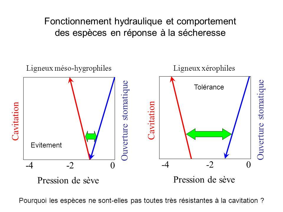 Pression de sève 0-2-4 Ouverture stomatique Cavitation Ligneux xérophiles Pression de sève 0-2-4 Ouverture stomatique Cavitation Ligneux méso-hygrophi