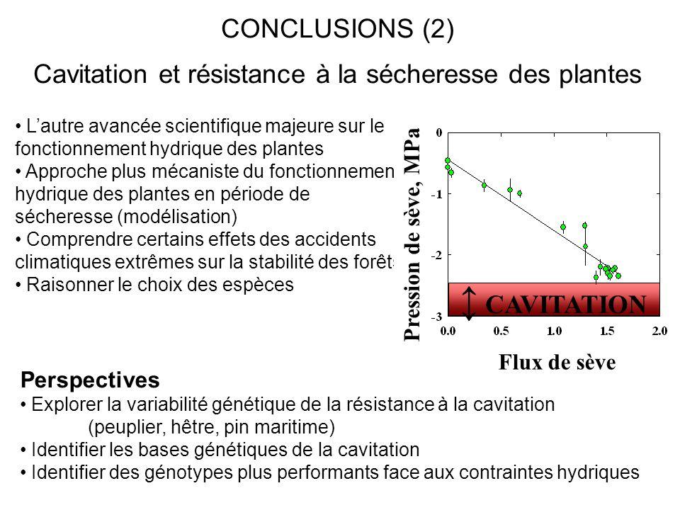 CONCLUSIONS (2) Cavitation et résistance à la sécheresse des plantes L'autre avancée scientifique majeure sur le fonctionnement hydrique des plantes A