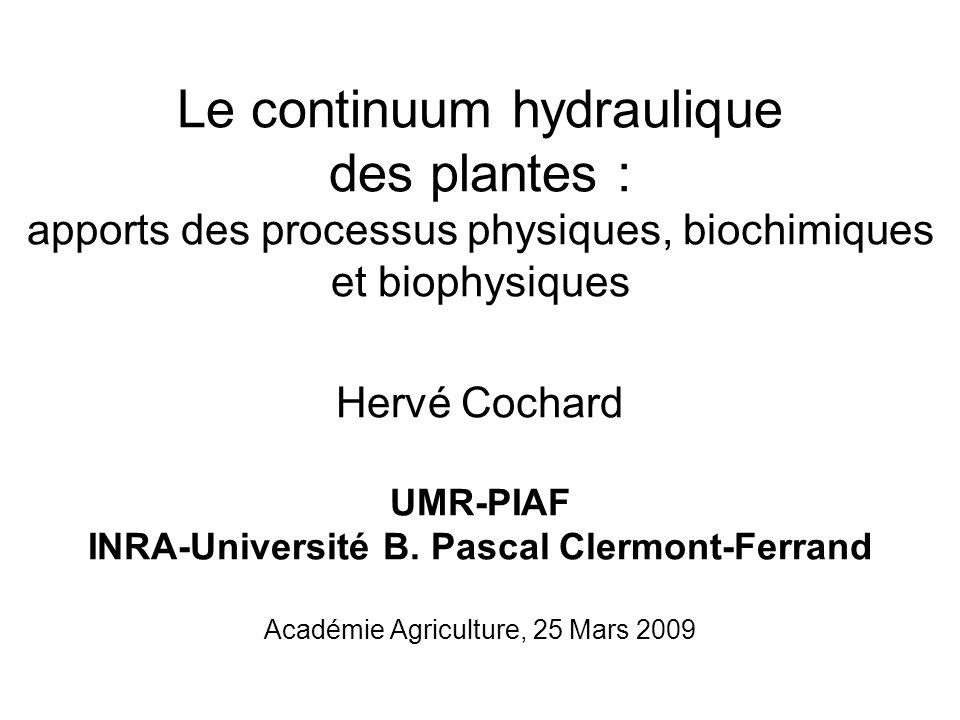 Le continuum hydraulique des plantes : apports des processus physiques, biochimiques et biophysiques Hervé Cochard UMR-PIAF INRA-Université B. Pascal