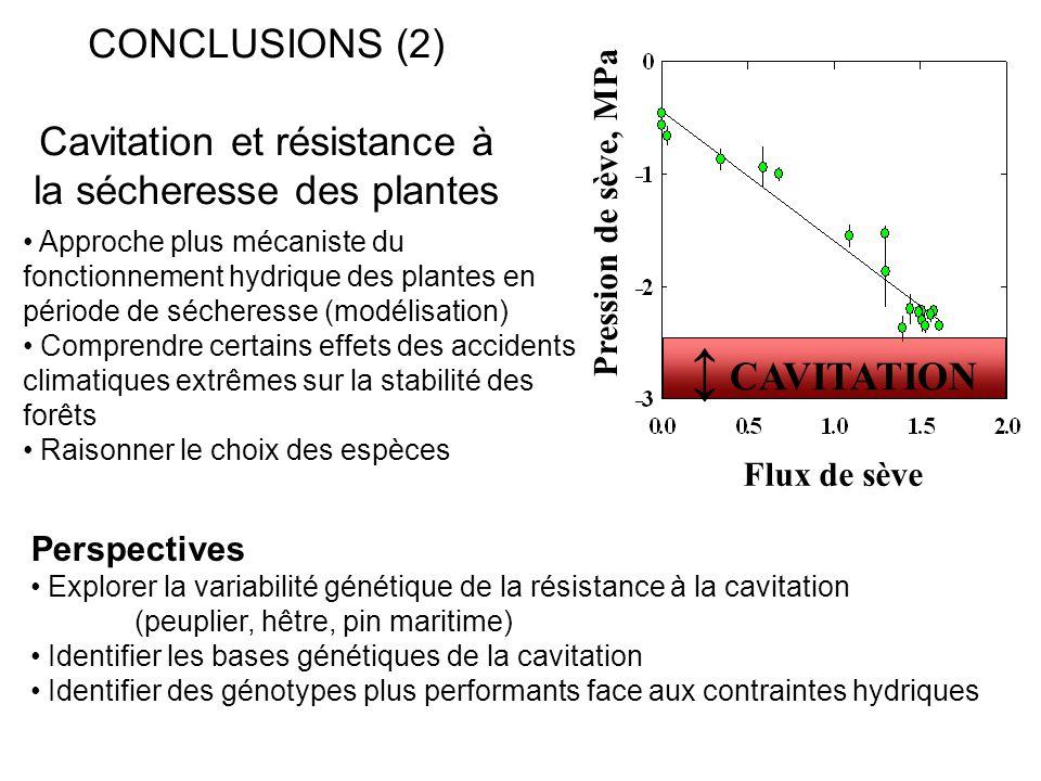 CONCLUSIONS (2) Cavitation et résistance à la sécheresse des plantes Approche plus mécaniste du fonctionnement hydrique des plantes en période de séch