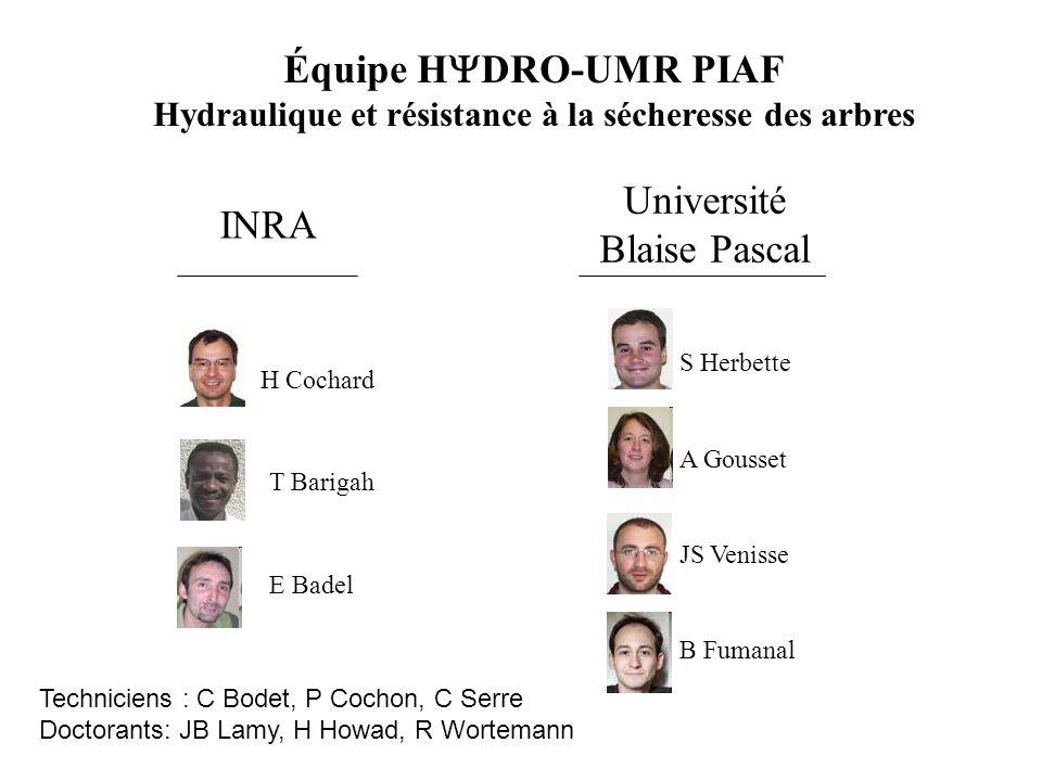 Équipe H  DRO-UMR PIAF Hydraulique et résistance à la sécheresse des arbres H Cochard T Barigah S Herbette A Gousset JS Venisse INRA Université Blais