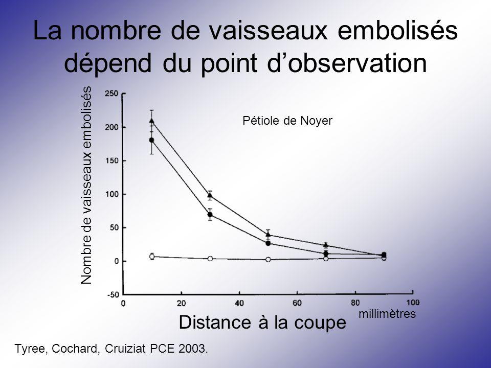 La nombre de vaisseaux embolisés dépend du point d'observation Nombre de vaisseaux embolisés Distance à la coupe millimètres Pétiole de Noyer Tyree, C