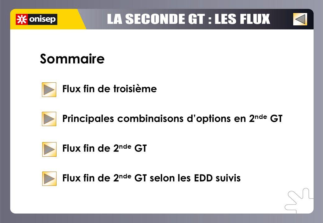 Sommaire Flux fin de troisième Principales combinaisons d'options en 2 nde GT Flux fin de 2 nde GT Flux fin de 2 nde GT selon les EDD suivis