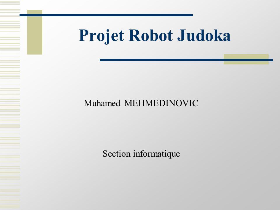 Objectifs Ensemble de classes modulaires permettant la gestion du robot:  le déplacement: Tourner Avancer Attaque Défence  la localisation:  l'orientation: